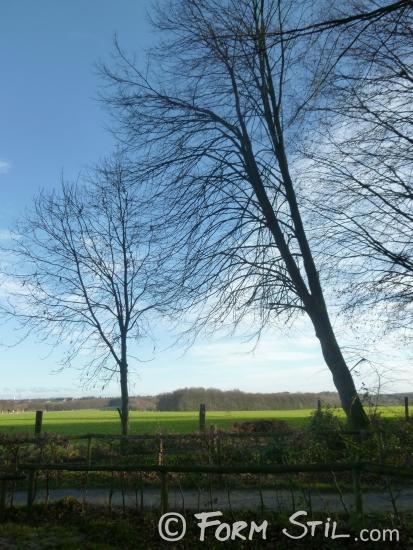 draussen Natur Stimmung Was man sich im März vornehmen sollte spazieren gute Laune Gesundheit Frühling