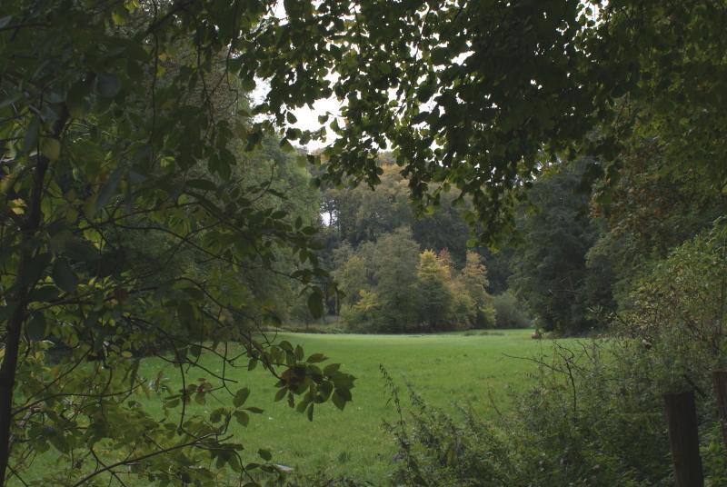 Herbst, warum ich mich auf den Herbst freue, Tipps, Vorhaben, Pläne, Jahreszeit, Herbst